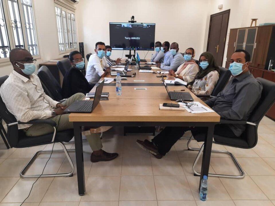 CEALT, Djibouti team members participating in the 5th ACE Impact Virtual Regional Workshop